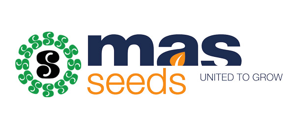 logo mas seeds home