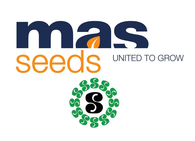 logo mas seeds