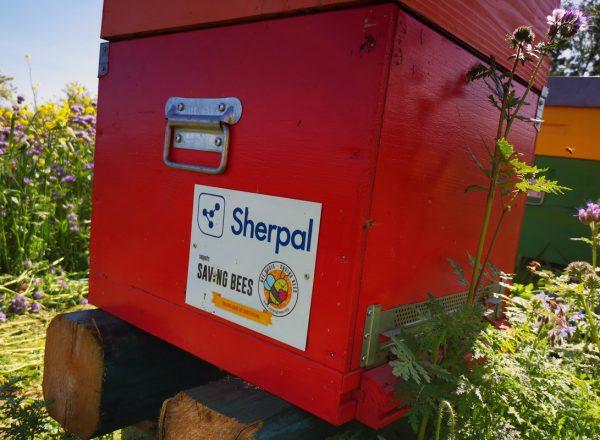sherpal